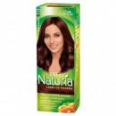 Naturia Farbe für  Haare 222 Wild Kastanie