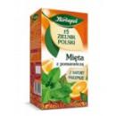 Herbapol Herbal  Tea, Fruit Mint & Orange