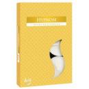 Mondiale del profumo Hypnose: Candele profumate, t