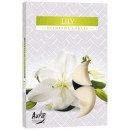 Scented candles, heaters, tealight: Lily