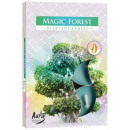 Scented candles, tealight: Enchanted forest