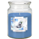 BIG Scented candle with lid Antitabak