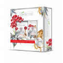 Face Care RED GINSENG 40+ Gift Set