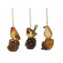 Vogel di poli su frutti di bosco, 9 centimetri