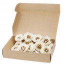 wholesale Jewelry & Watches: Natural Diffuser Flowers - Small Poppy on String (