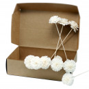 Natural Diffuser Flowers - Carnation on Reed (box)