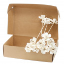 Natural Diffuser Flowers - Lily on Reed (box)