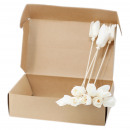 Natural Diffuser Flowers - Tulip on Reed (box)