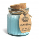 wholesale Candles & Candleholder: Winter Berry Soy Pot of Fragrance Candles