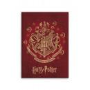 Couverture polaire Harry Potter Draco dormiens