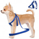 wholesale Gifts & Stationery: Harness for a cat dog + reflective leash, col 2.5