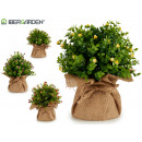 artificial plant small flower pot sack, 4 times s