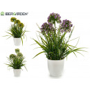 wholesale Jewelry & Watches: flower ball stems white flowerpot 3 times assorted