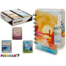 notebook 80 pages landscape 4 times assorted