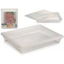 transparente Lunchbox aus Kunststoff 22x26 cm
