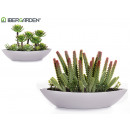 wholesale Artificial Flowers: planter oval plant red green assorted models 2