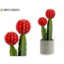 fiore alto in plastica rosso cactus 45 cm