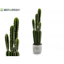 plastic cactus high spines 80cm