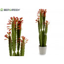 wholesale Artificial Flowers: high plastic cactus red leaves 100cm