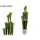 wholesale Artificial Flowers: cactus plastic high narrow leaf verd 100