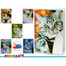 notepad a4 cap 3d cats 6 times assorted 196 page