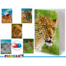 notepad a4 cap 3d animals 6 times assorted 196 pá