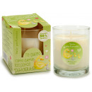 wholesale Home & Living: glass candle glass 30h green apple