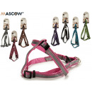 pet harness stripes small, colors 6 times assorted
