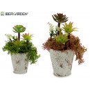 wholesale Garden Equipment: flower pot stone plant fern watering can, 2 ...