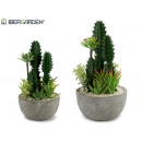 wholesale Artificial Flowers: round cactus center assorted 2