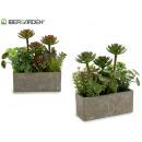 rectangular planter stone plants su2