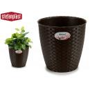 pot de fleurs naturel chocolats inter / exter 24di