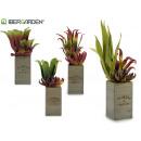pot de fleurs carré haut bois 4 fois assorti
