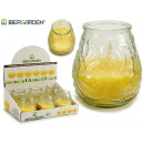 transparent relief citronella candle