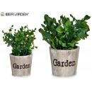 vaso da giardino per piante verdi, 2 volte assorti