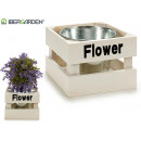simple flowerpot white flower