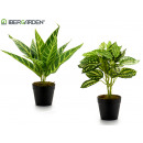 artificial plant 22cm light green 2 times assorted