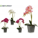 wholesale Artificial Flowers: 50cm gray square pot orchid assorted 4col