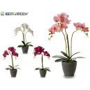 wholesale Artificial Flowers: 48cm gray conical pot orchid assorted 4cl
