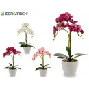 orchidea vaso da fiori rotondo conico bianco 4cl