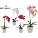 wholesale Artificial Flowers: white round potted orchid 43cm 4col