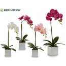 wholesale Artificial Flowers: white square potted orchid 43cm 4cl