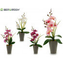 wholesale Artificial Flowers: 37cm gray conical pot orchid assorted 4cl