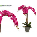 wholesale Artificial Flowers: orchid fuchsia flowerpot conica gray jumbo