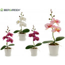 wholesale Artificial Flowers: small white round flowerpot orchid assorted 4c