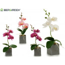 wholesale Home & Living: small gray square flowerpot orchid assorted 4c