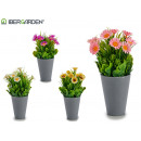 flowerpot gray daisies, colors 4 times assorted