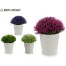 wholesale Artificial Flowers: flower pot white ptos flower mini assorted 4color