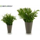 wholesale Food & Beverage: gray pot long leaves 2 models