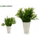 wholesale Artificial Flowers: white pot long leaves 2 models